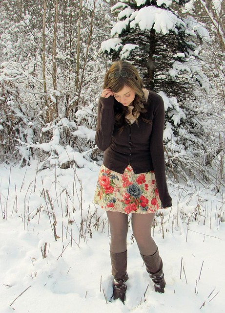 snowrose5