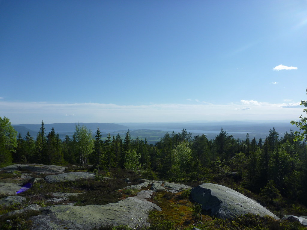 Utsikt fra Ringkollen