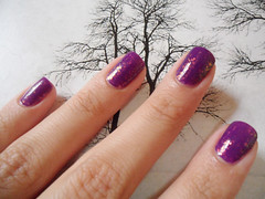 Eclipse + Christine (Prii Walker) Tags: purple polish nails flakes roxo unha esmalte flocado