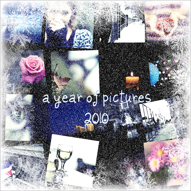 a year of pictures 2010