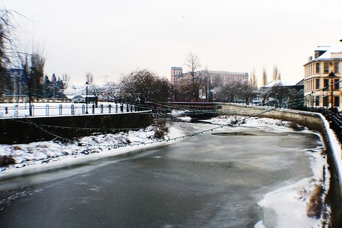 Frozen Paisley on Christmas Day
