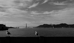 Black Gate (Thomas Genin) Tags: sanfrancisco blackandwhite bw usa golden gate san francisco goldengate