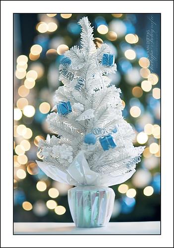 White Christmas Tree by Vincent_AF, on Flickr