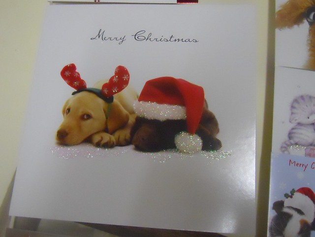 Christmas 2010 (35)