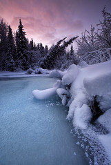 Cold Creek (Wolfhorn) Tags: snow cold ice nature alaska creek sunrise landscape wilderness freezingwinter