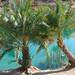 wadi Bani Khaled pool shore