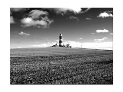 Happisburgh Lighthouse (Gerry Balding) Tags: england sky lighthouse field norfolk east anglia happisburgh northnorfolk