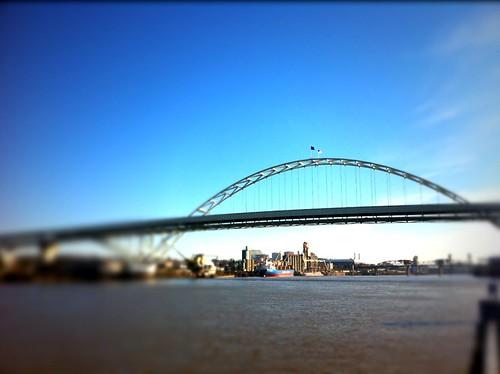 Blue sky Portland