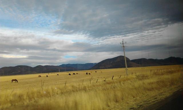 Camino a Bachíniva