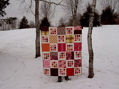 Innocent Crush Quilt