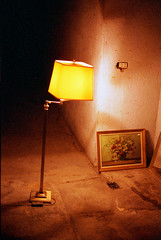 the lamp who fell in love with a painting (Ghostwriter D.) Tags: flowers lamp painting iso800 lomography nikon f80 lomographicfilm