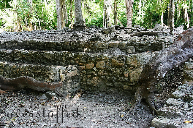 Mayan Living Quarters