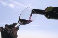 Buscando consumidores: El vino no está solo en la publicidad televisiva