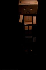 Amnesia & Me (woodandink) Tags: japan 35mm toys nikon cardboard danbo snoot d40 strobist danboard