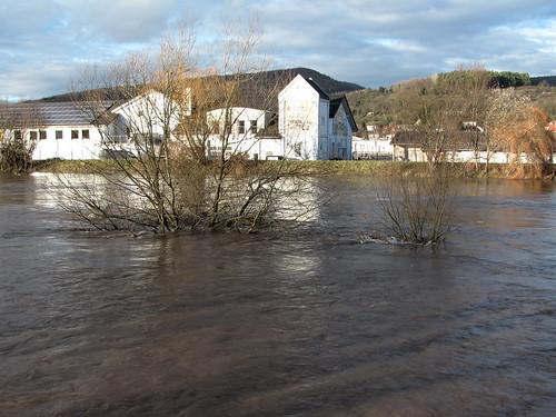 Weide im Hochwasser der Werra
