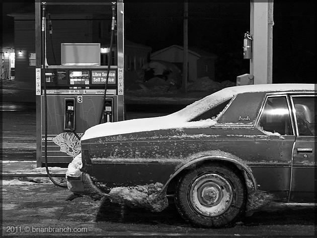 P1130812_1977_impala