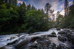 Rapid River Braan (GDDigitalArt) Tags: dunkeld scotland fast flow forest nature rapids river rural water woods