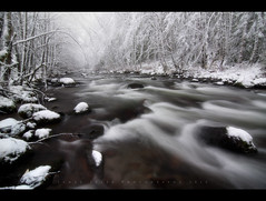 Zigzag River - Mount Hood Oregon (Jamey Pyles) Tags: trees winter snow cold oregon creek river zigzag mounthood jameypylesphotography