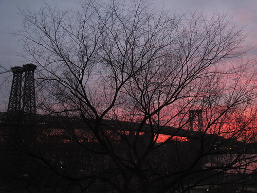 From my window, Thanksgiving morning, 2010