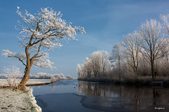 My Favorite Spot at the Polder (Winter) (reintjedevos [lay out - night mare for Admins]) Tags: winter nature netherlands landscape natuur showroom 14k groningen leek landschap nienoord gettyimage 24k weerkaatsing reintjedevos natureselegantshots yourarthastouchedtheworld damniwish universalelite ilikethenature lizasphotogarden keepyoueyesopen beautifulgroningen mygearandmediamond goldstarawardsuperstars supergroupphotographic flickrbronzesilvergoldaward photossansfontires seasonaward pegasusawardlv1tm6 photographyforrecreationlv1tm8 bestshotlv1tm3 betterthangood1tm5 visionaryartgallerylv1tm3 goldstarawardtm5 buildyourrainbow1tm7 nederlandopznmooist 2ndplaceinthecompetitioninvisionaryartsgallery betterthangoodsuperstar