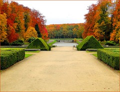 Tervueren park, before the frost with overcast sky. (jackfre2) Tags: park brussels lake fall pond colours belgium perspective latefall tervuern theroyalmuseumforcentralafrica