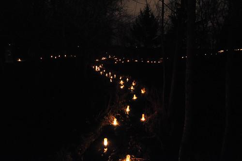 Luminous Creek