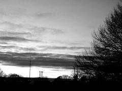 Bleak Sky