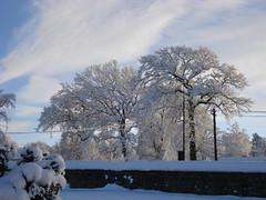 Cold December morning (GoldScotland71) Tags: snow west scotland lothian polbeth