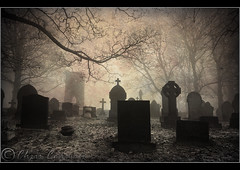 The dark tower... (Digital Diary........) Tags: trees mist mystery dark atmosphere graves creepy darktower chrisconway