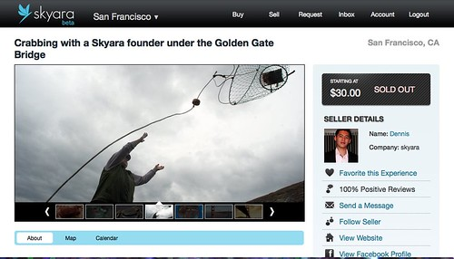 screenshot of Skyara