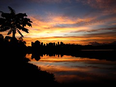 Hi from Brazil!!! (peggyhr) Tags: pink blue trees friends sunset brazil orange white black water yellow clouds reflections niceshot travellers silhouettes curitiba goldenhour cityskyline rves 50faves burningskys everycloudhasasilverlining mywinners sunsetwednesday superaplus aplusphoto flickraward diamondclassphotographer flickrdiamond peggyhr citritbestofyours heartawards justfordream everydayissunday luoghimagici rubyphotographer flickrbronzaward 100commentgroup photographerparadise  artofimages tophonorofphotographerparadise crepuscolosunsetssunrisesnights angelawards saariysqualitypictures flickraward crunchnature lizasenchantingphotogarden asbeautifulasyouwant photosick doublyniceshot pegasusaward quartasunset flickraward5 simplyyourbestphoto cloudsandanythingelsehomeoftheclouds bestfriendgroups thehouseofimagegallery allaboutworld meineschnstenundliebstenfotos pegasussilvertrophyaward pegasusbronzetrophyaward landscapebeautybelezadepaisagem sunsationalskies skylinejunkies thebeautifulreflexesreflectionsthelight artnetcontempoarayartist img0061p evensong~ firelightbyadmininvitation~