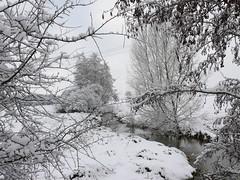 Vouziers sous la neige 12.2010 (ardoise08) Tags: vouziers neige ardennes champagneardenne argonne ruisseau ruisseaudelamuette condélesvouziers