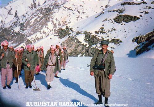 نيك صنعاني قصص Barzani peshmerge kurd Kurdistan وێنهكان خویان پیناسهن