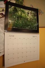 calendar envy