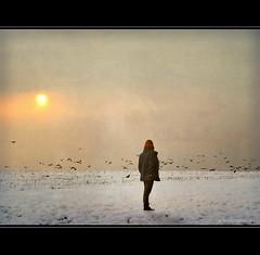 Crows in Winter (h.koppdelaney) Tags: world life winter woman sun snow art nature digital photoshop gold symbol magic picture philosophy imagination wisdom metaphor crows psyche symbolism psychology archetype saariysqualitypictures koppdelaney