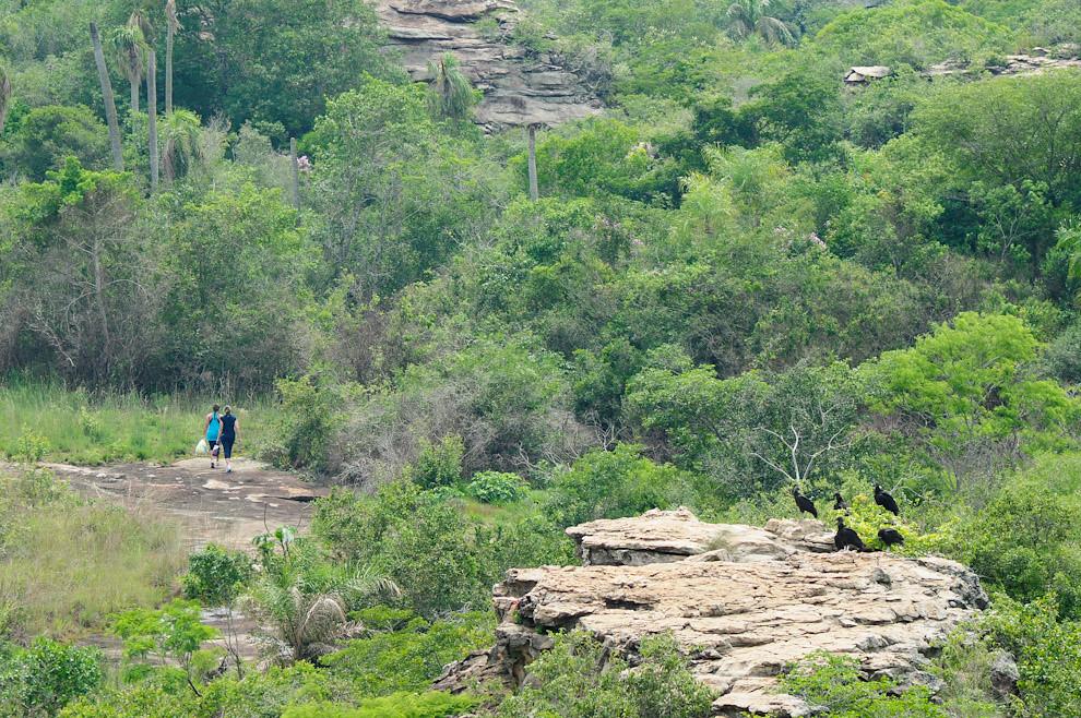 La pareja que abandona el Puesto de Control 01 se ofrece a llevar restos de botellas vacías de agua hasta el campamento principal, en un signo de respeto por la naturaleza. A la derecha los dueños de los cielos, los Yrybus observando. (Elton Núñez - Piribebuy, Paraguay)