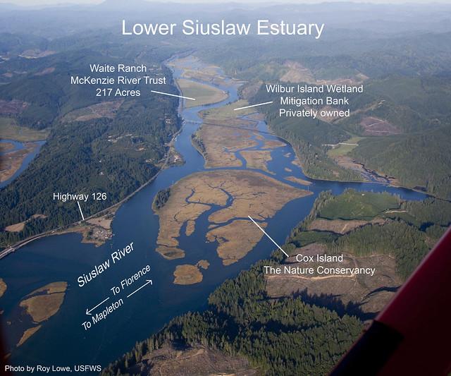 Siuslaw Estuary
