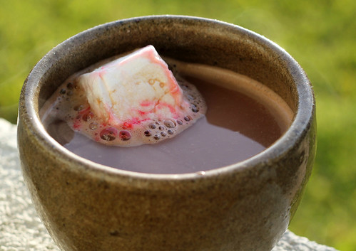 Hot Cocoa with Homemade Marshmallow