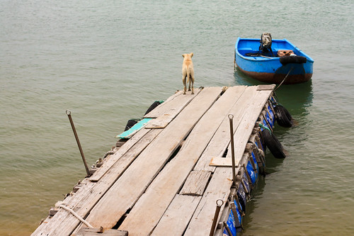 Hong Kong - junk trip to Po Toi Island