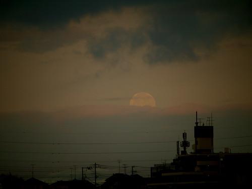 不穏な朝の月