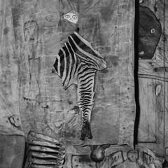 Roger Ballen - Skins and bones