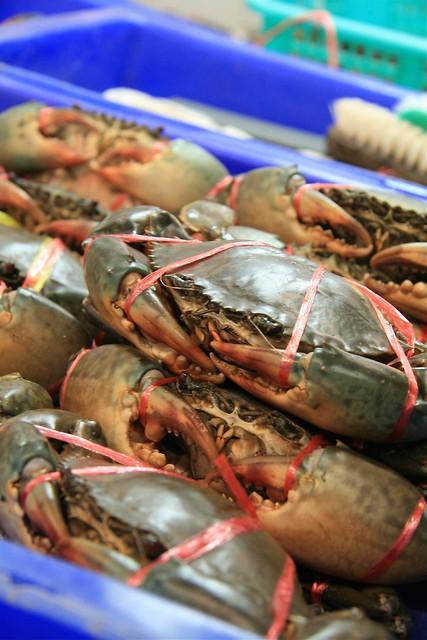 2010thailand22deccrabs
