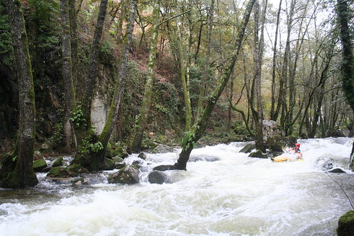 Galicia 437