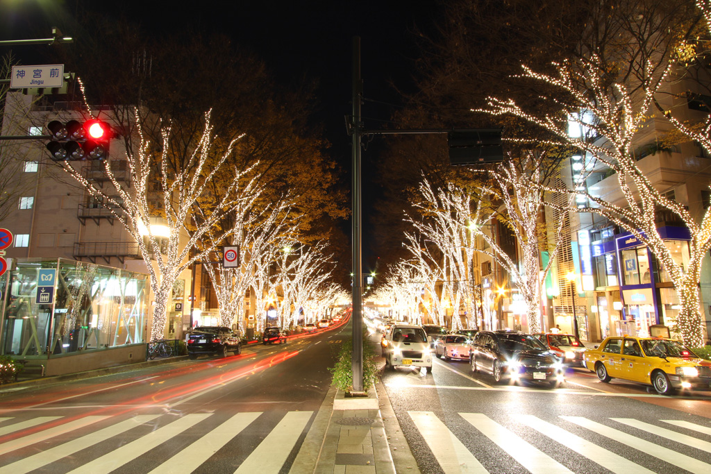 Omotesando Illuminations 2010 (1)