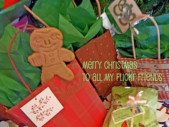 My Gingerbread Man... (Oh Kaye) Tags: macro tissue wrapped tags bags merrychristmas bows packages gingerbreadman toflickrfriends ourdailychallenge