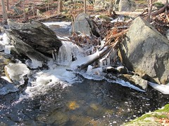 IMG_6643 (Ellen Bulger) Tags: ice woods connecticut geology woodbridge wepawaugriver