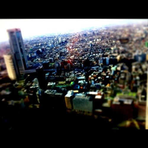 東京都庁南展望台