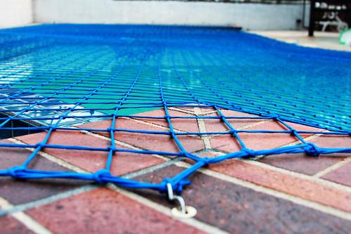 1:365 - Pool Net
