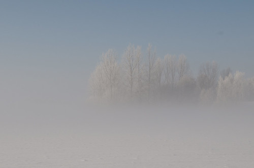 Lith, Mist over sneeuw Fog over snow by petervandelavoir