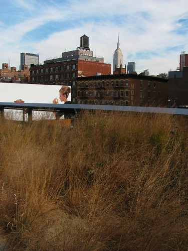 NYC Highline and Empire State Building